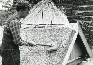 Cyril Rackham thatching for the Chelsea Flower show in 1953