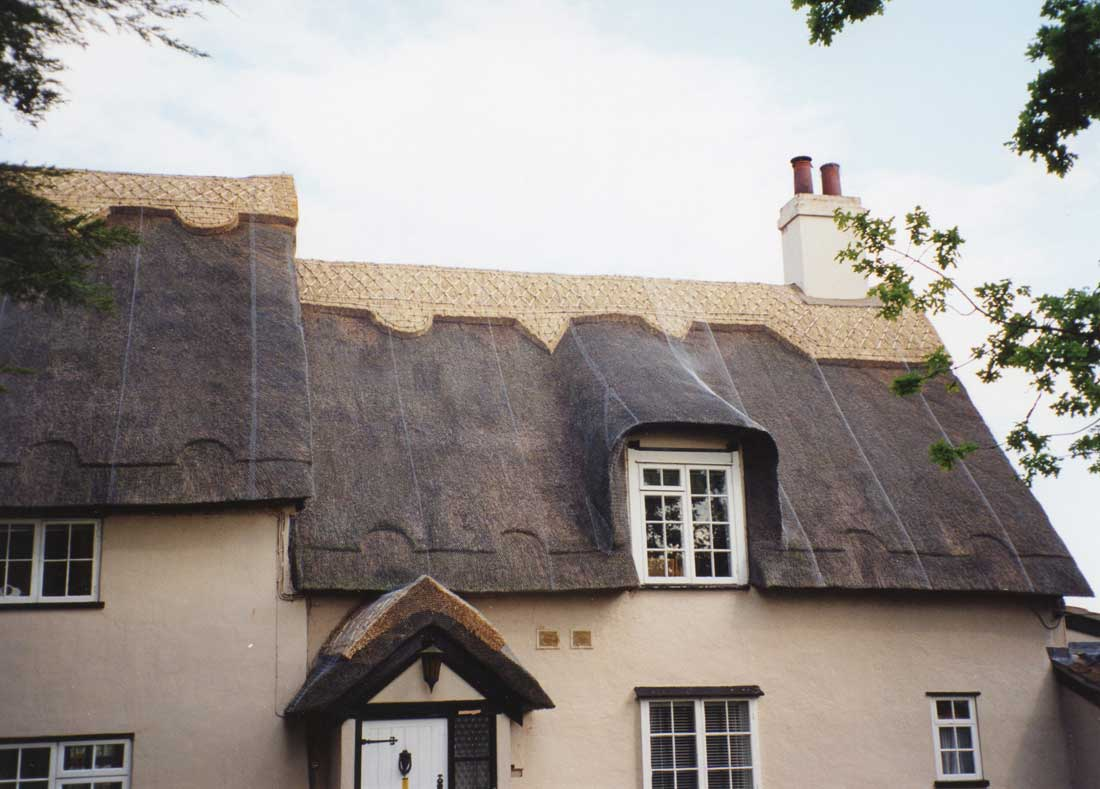 Thatched cottage in Middleton